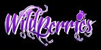 logo wild berries
